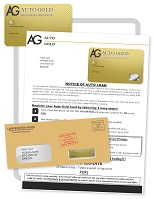 Auto Gold Card Direct Mail Flyer example